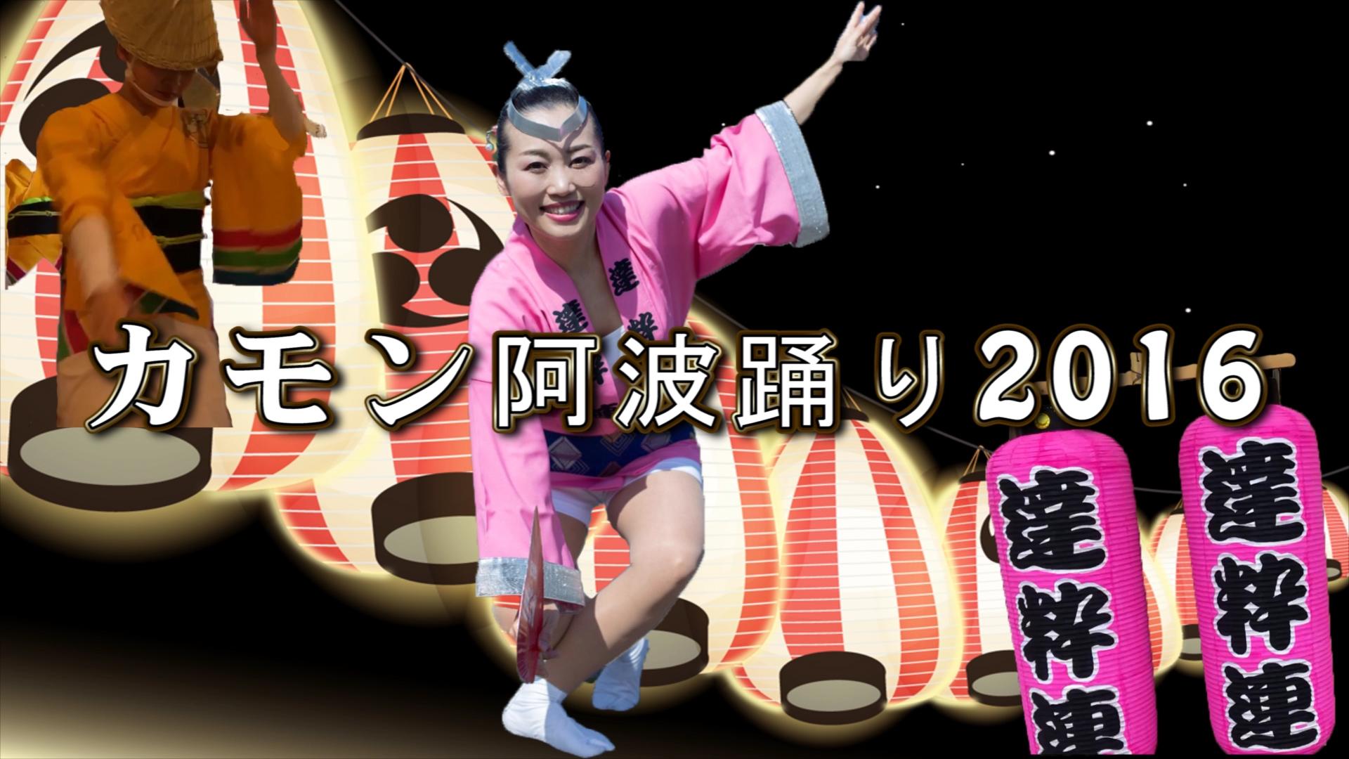 【達粋連の踊るレポータみいよがいく】カモン阿波踊り2016 #1